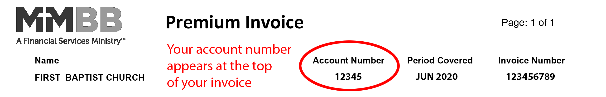 Account Number Format
